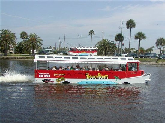 Parrots of the Caribbean Duck Boat Tours: Two Trolley Ducks On Tour