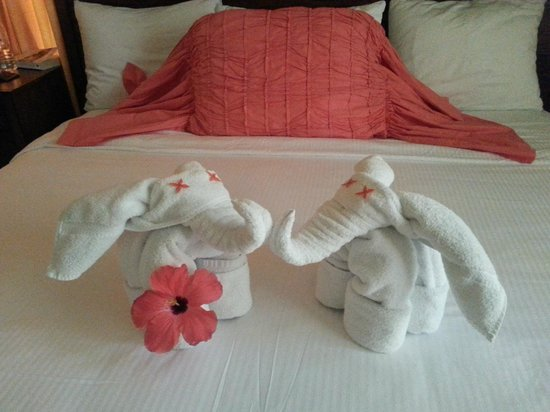 Mayan Princess Beach & Dive Resort: towel creations by Reyna