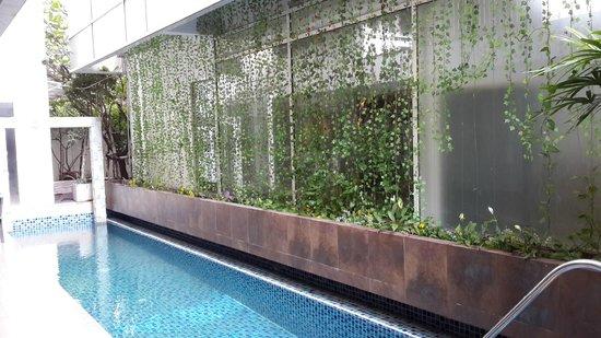 Nantra Retreat & Spa : The Pool