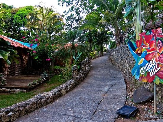 The Colibri Hill Resort : Coral Pathway to Hotel