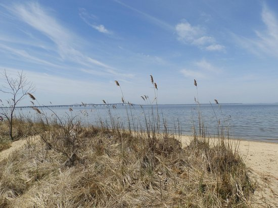 Terrapin Nature Park : One of the trails that leads to the beach @ Terrapin Prk