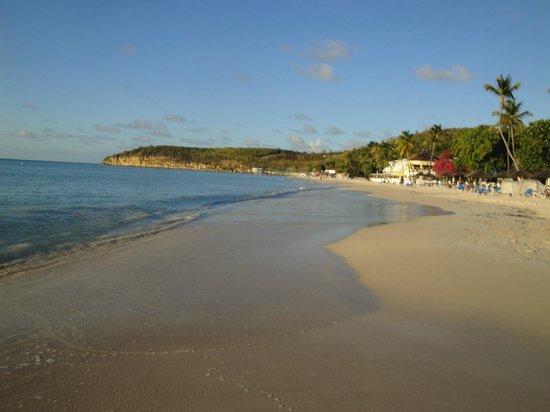Sandals Grande Antigua Resort & Spa : Beach in front