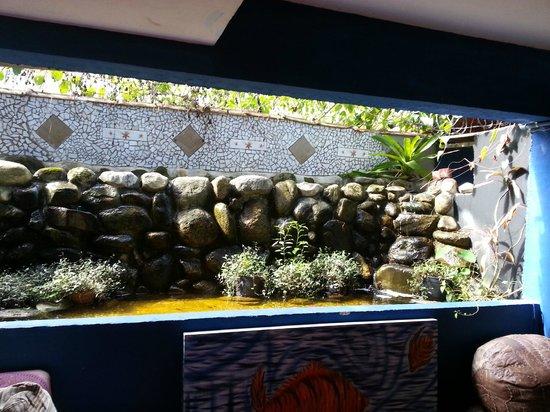 Golfinho Tropical: Hall