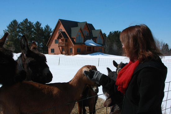 Second Wind Country Inn: Second Wind