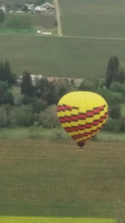 Balloons Above the Valley: Flight at Napa Valley