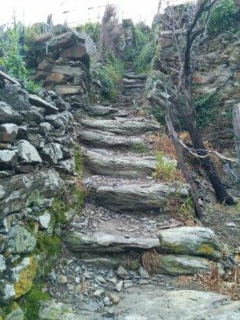 Da Paulin Rooms and apartments : Trail going up to terraces.
