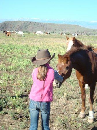Bitterroot Ranch: Hard to say goodbye