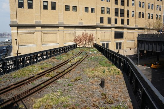 Uncle Sam's New York Walking Tours: The Railways of the High Line