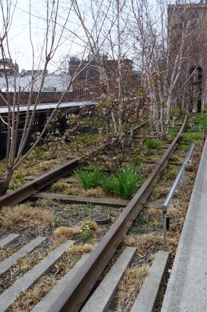 Uncle Sam's New York Walking Tours: Garden vs Railway