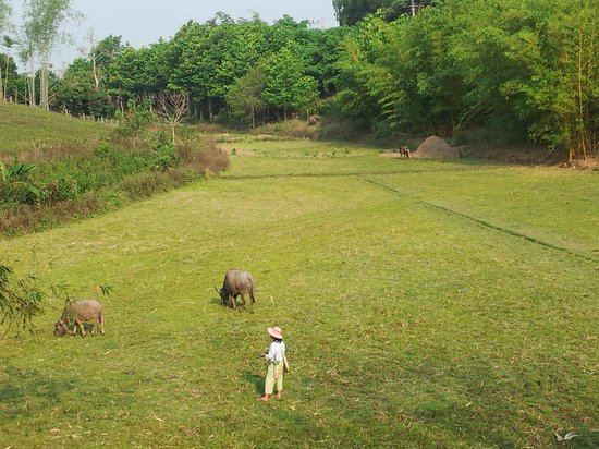 Chang Garden Resort - Family Holiday Park: The Fairway