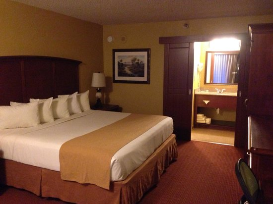 Rosen Inn at Pointe Orlando: Room with king size bed.