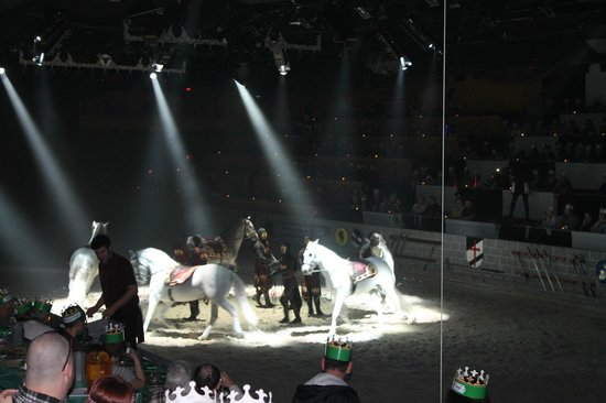 Medieval Times Dinner & Tournament: Well trained beautiful horses!