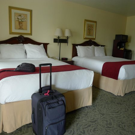 Best Western Petaluma Inn: Two queen room