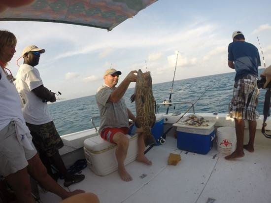 Blue Reef Adventures Ltd: Beautiful black grouper