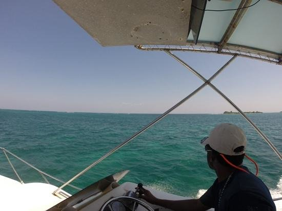 Blue Reef Adventures Ltd: Roland looking for the next big fish
