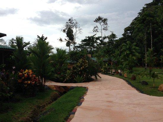 Blue River Resort & Hot Springs : walkway