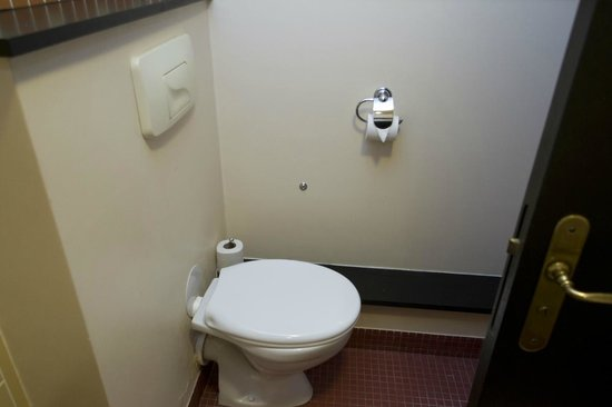 Disney's Sequoia Lodge : Toilet