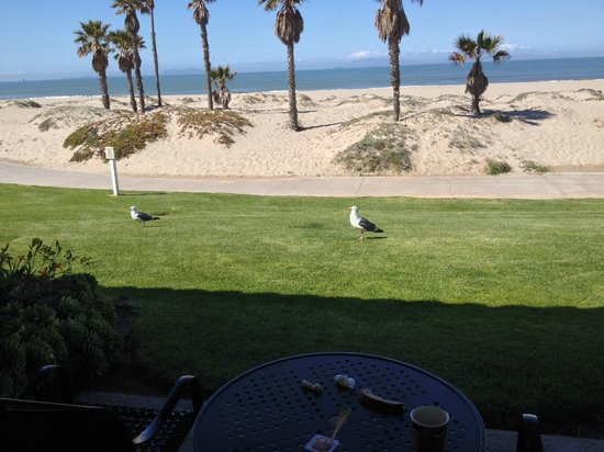 Embassy Suites by Hilton Mandalay Beach Resort: we took our breakfast back to our room to eat outside with the seagulls and a view of the ocean