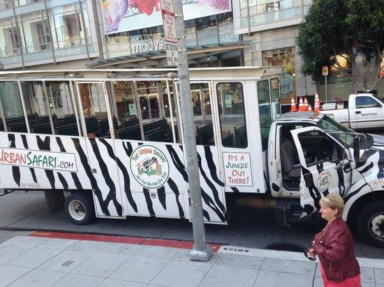 The Urban Safari : All aboard the safari bus!