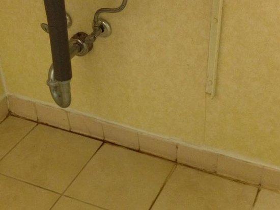 Days Inn Perry Near Fairgrounds: mildew behind toilet