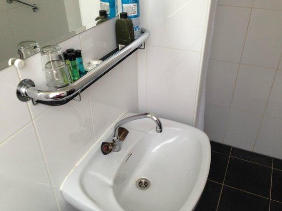 Hotel De Looier: baño