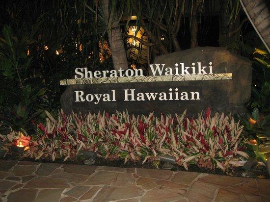 Sheraton Waikiki: 中庭。