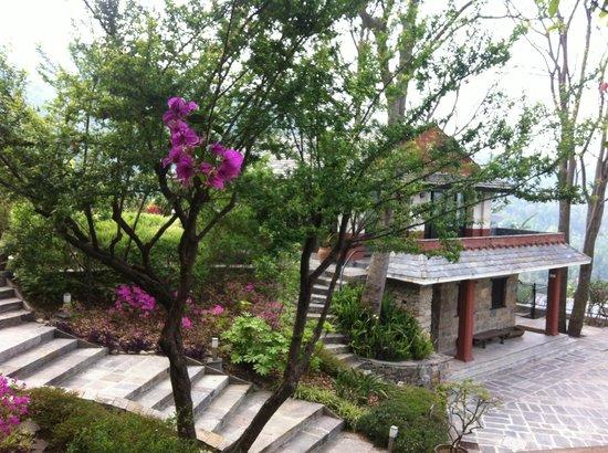 Chandra Ban Retreat: Resort