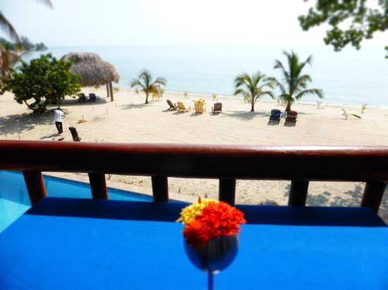 Mariposa Beach Suites : Amazing view while eating with fresh flowers from the grounds!