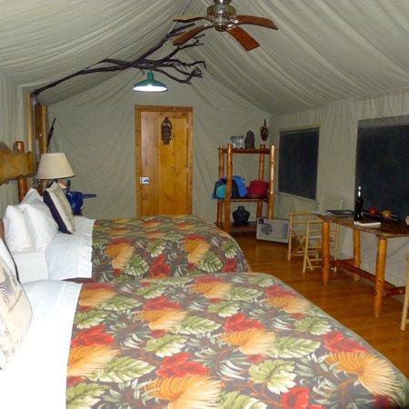 Safari West : #29 room