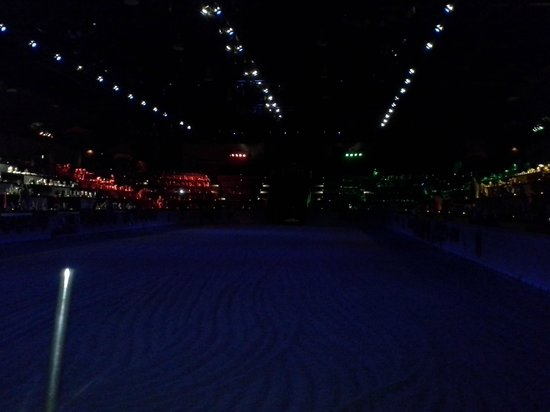 Medieval Times: Best view in the house