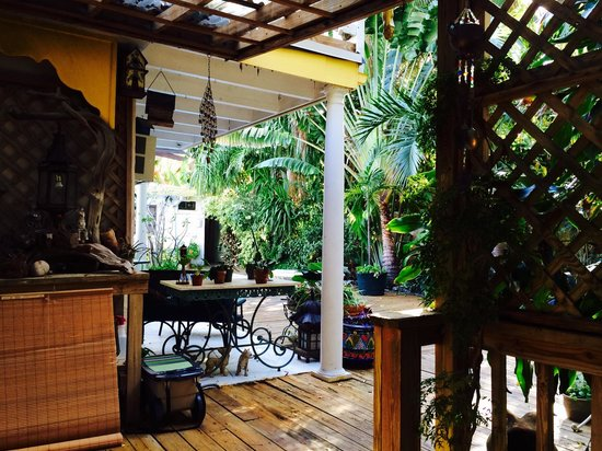 Casa Thorn Bed & Breakfast: This is a partial view of the backyard. Plenty of places to sit and get some sun, or read. The p