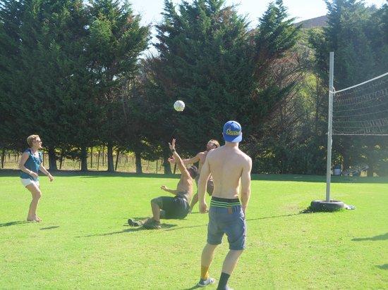 Volleyball at Wild on Waiheke