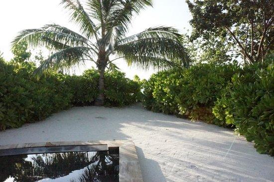 Four Seasons Resort Maldives at Kuda Huraa: View from our room