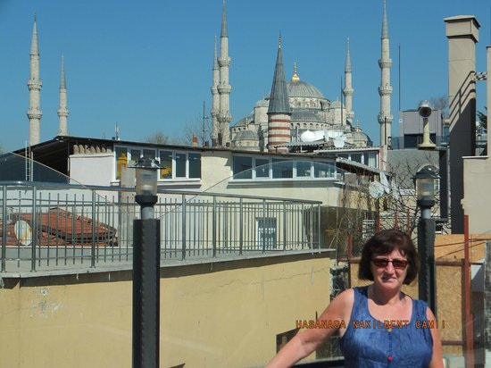 Hotel Coliseum : The rooftop terrace, view to the Blue Mosque.