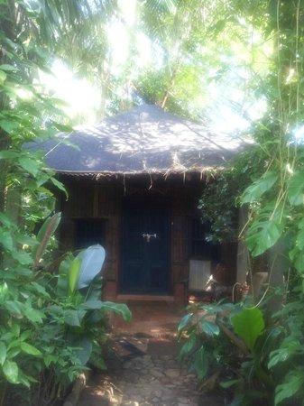 Bhakti Kutir : View of Hut no.12