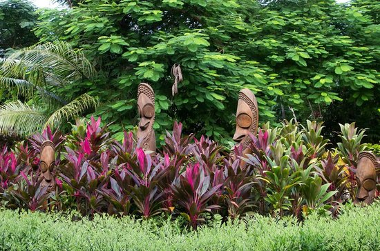 The Havannah, Vanuatu: a small part of the gardens