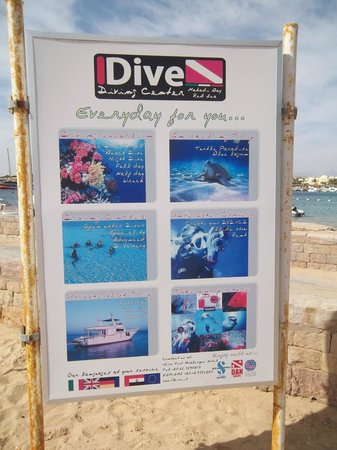 Fort Arabesque Resort, Spa & Villas: idive