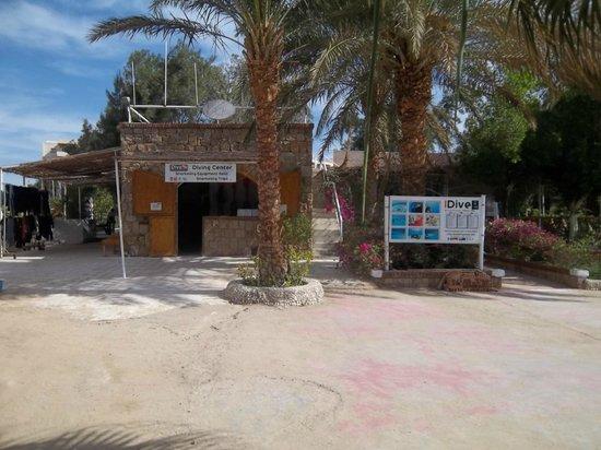 Fort Arabesque Resort, Spa & Villas: club de plongée