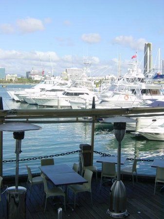 Marina Mirage : ハーバー