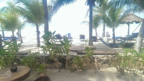 Beachfront La Palapa Hotel Adult Oriented: spiaggia2