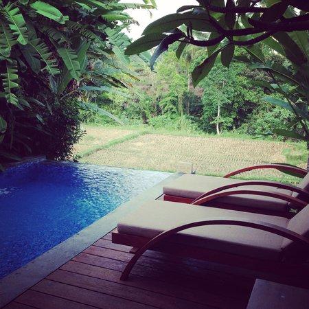 Ubud Green: Bayu Villa