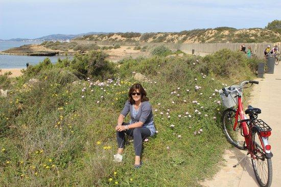 Palma Lock and Go - 1 Day Tours: Fab bike trip along bay of Palma
