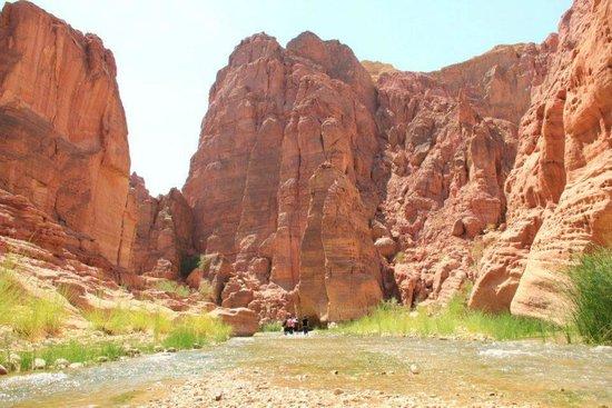 Mujib Nature Reserve: Wadi Al Hasa-Mujib