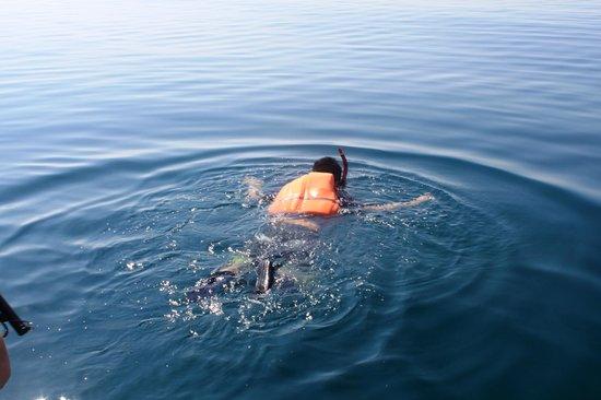 Honda Bay: Pambato reef