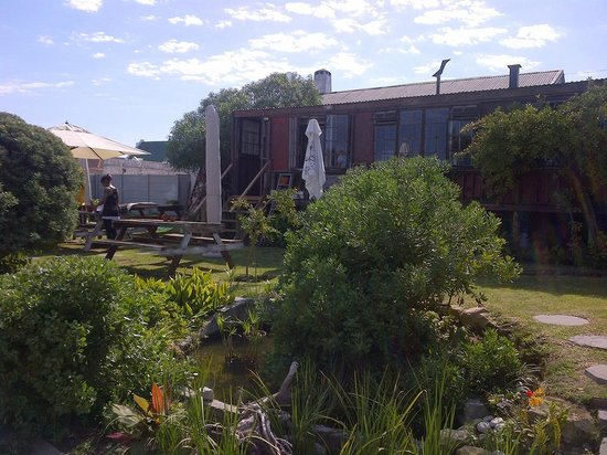 Blue Goose : Lovely garden outdoor seating, good birdlife!
