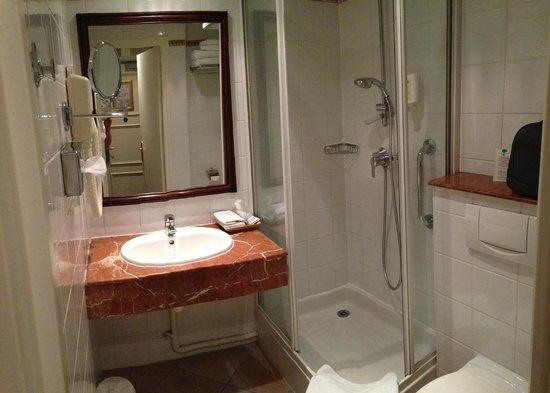 Hôtel Jardin Le Bréa : Bath room 15