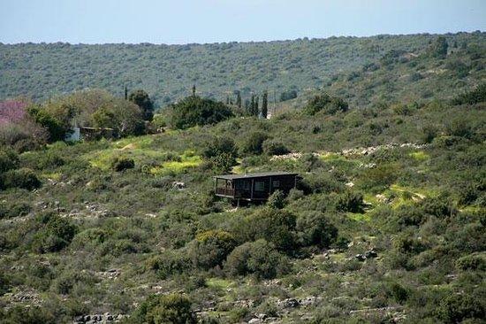 Smadar beClil Cabins: Cabin's exterior 2
