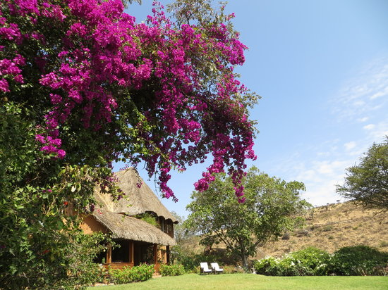 Lewa Wilderness: The Main House