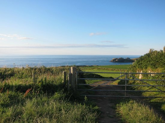 Celtic Camping: view to sea from campsite