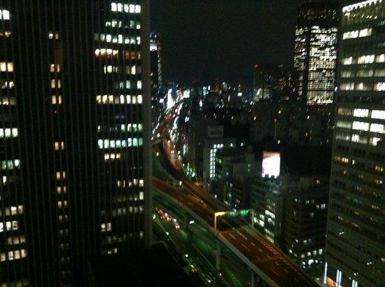 Ana Intercontinental Tokyo: Gece otelden çevre görünümü